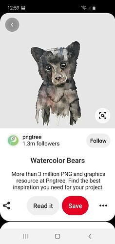 Screenshot_20201231-125918_Pinterest